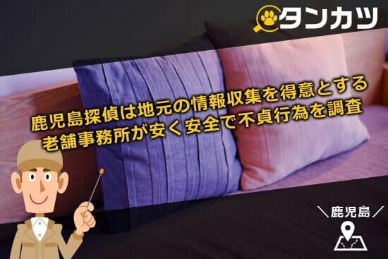九州地方の鹿児島探偵は地元の情報収集を得意とする老舗事務所が安くて安全