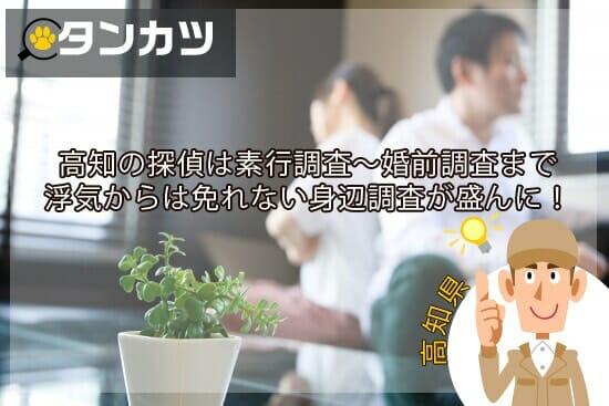 高知県の探偵ではのんびりの南国でも浮気からは免れない身辺調査が盛んに!
